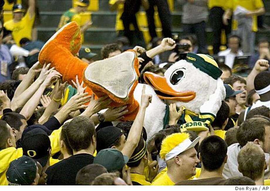 The Oregon Mascot is hauled in the air by celebrating fans after Oregon beat Stanford 68-60 in their NCAA college basketball game in Eugene, Ore., Saturday, Feb. 21, 2009. (AP Photo/Don Ryan) Photo: Don Ryan, AP