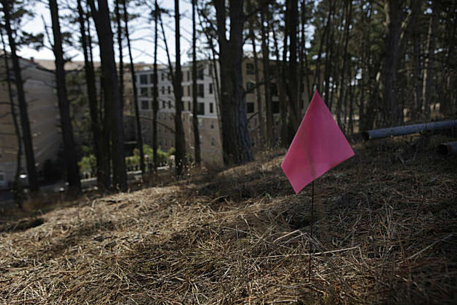 A marker is seen on the site of a Presidio Trust restoration project at Landfill 8, behind which is seen the newly renovated former hospital, on Tuesday, October 5, 2010 in San Francisco, Calif. Photo: Lea Suzuki, The Chronicle