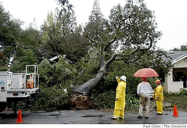 An unidentified homeowner (holding unbrella) talks to crews from the Public Works department in Palo Alto, Calif., on Monday, Feb. 16, 2009 after the tree crashed onto his home Sunday evening. Photo: Paul Chinn, The Chronicle