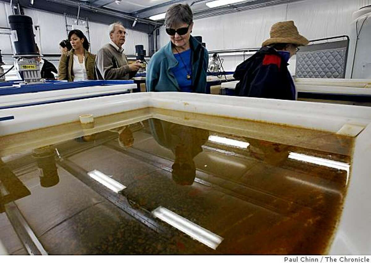 Visitors tour a desalination plant in Santa Cruz. The pilot program is a joint project operated by the Santa Cruz Water Department and the Soquel Creek Water District.