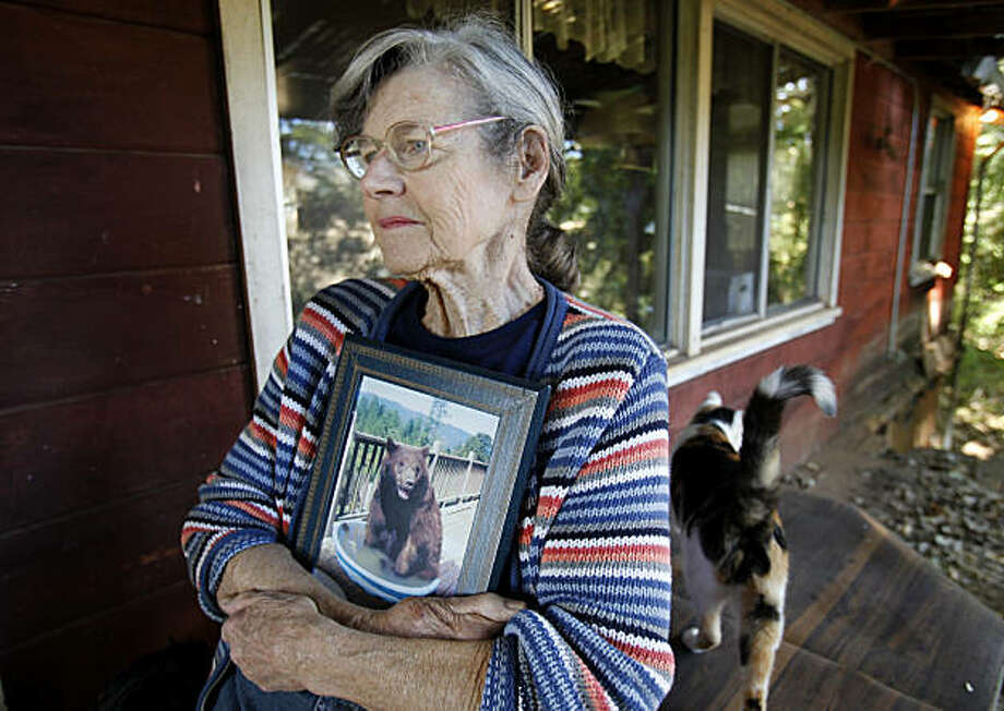 Lynne Gravier holds a portrait of one of her favorite bears named Biggie, who used to visit and sit in a pool on the deck of her home. Lynne Gravier, a Mendocino County woman who has been feeding bears for many years, had her home raided by state Fish and Game officials and has had to vacate her place above Laytonville, Calif. Photo: Brant Ward, The Chronicle