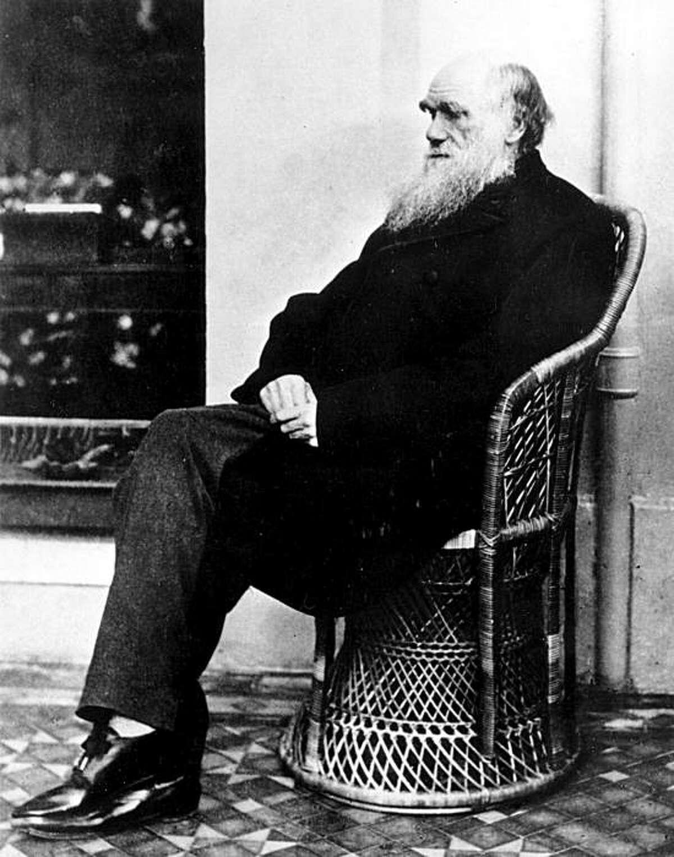 Charles Darwin in 1875.