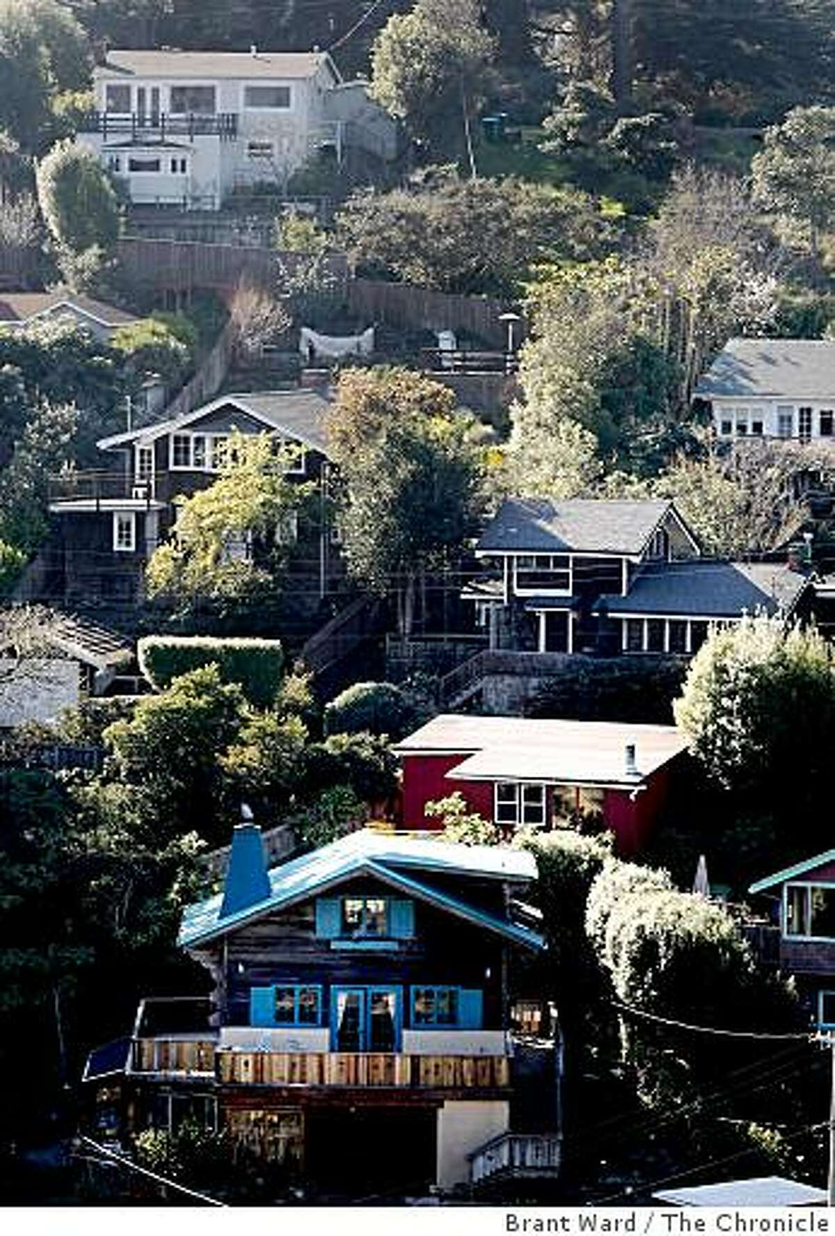 Homes built on a steep slope near downtown Bolinas. With little rainfall this year, officials are worried about dying pine trees and fires. Bolinas, Marin County's hippie enclave on the ocean, is facing a severe water shortage. Residents have been told to use only 150 gallons a day and businesses must cut back by 25 percent.