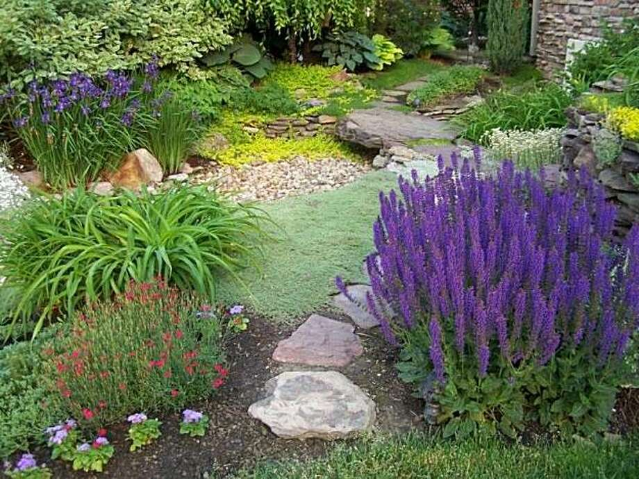 If your yard enjoys constant sun or is very shady, make sure the colorful flowers and blooming trees you choose can grow and thrive in those specific conditions. Photo: Courtesy Of Yardshare