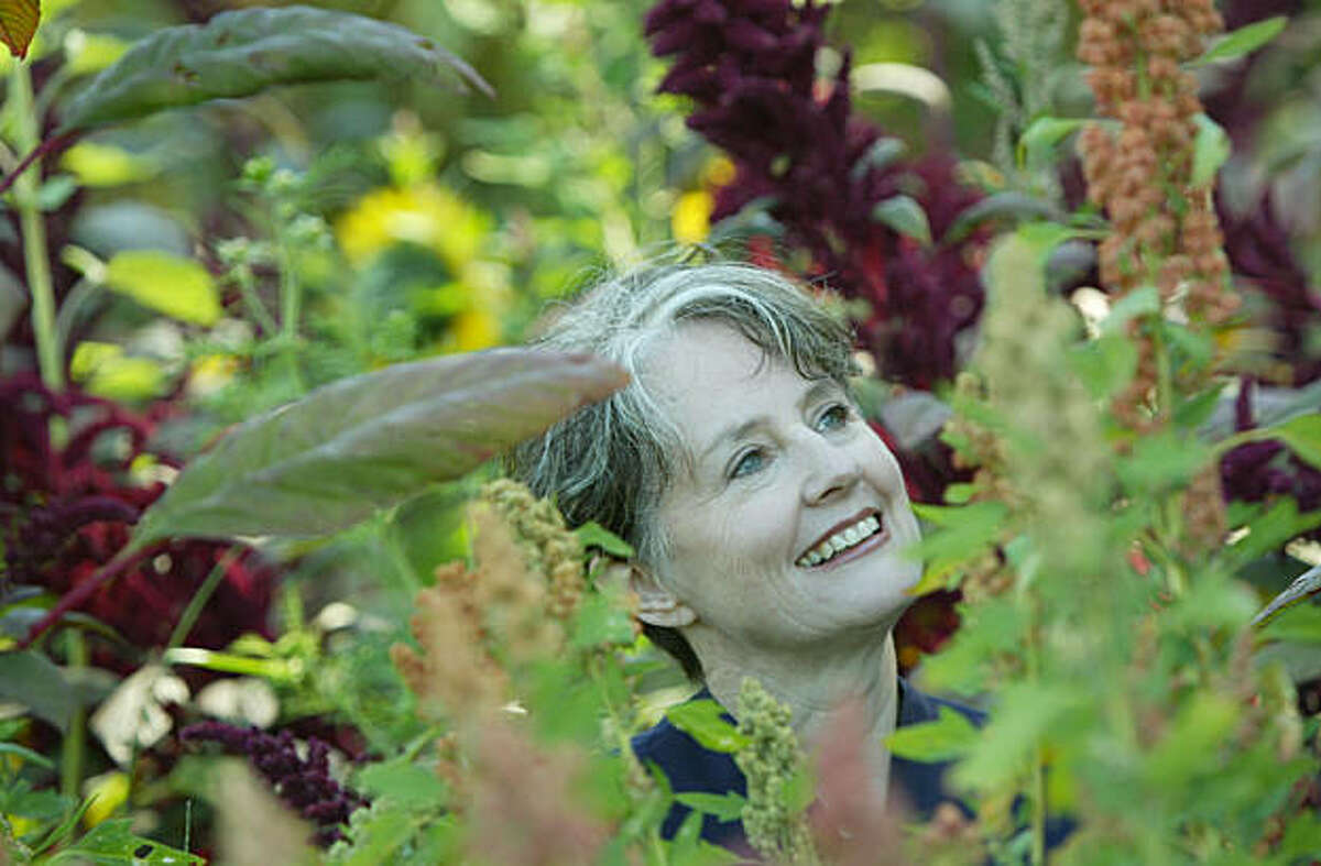 Alice Waters, shown in the Edible Schoolyard garden at Martin Luther King Middle School. Her foundation has jsut awarded the Berkeley School District a $4 million grant for programs relating to sustainable food production.