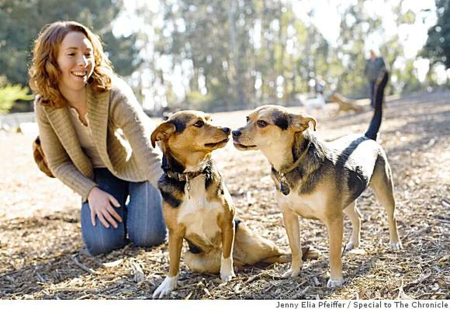 Sisters Reunited: After being seperated at birth in Oct. 2006, canine sisters Dobre (L), reunites with sibling Molly, and Molly's owner Kate Borun, at an Oakland dog park. Photo: Jenny Elia Pfeiffer, Special To The Chronicle
