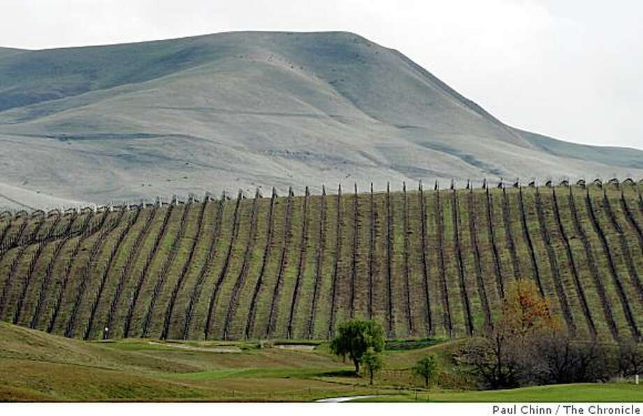 Vineyards stretching across rolling hills provide a picturesque backdrop for golfers at the Poppy Hills golf course in Livermore, Calif., on Friday, Jan. 23, 2009. Photo: Paul Chinn, The Chronicle