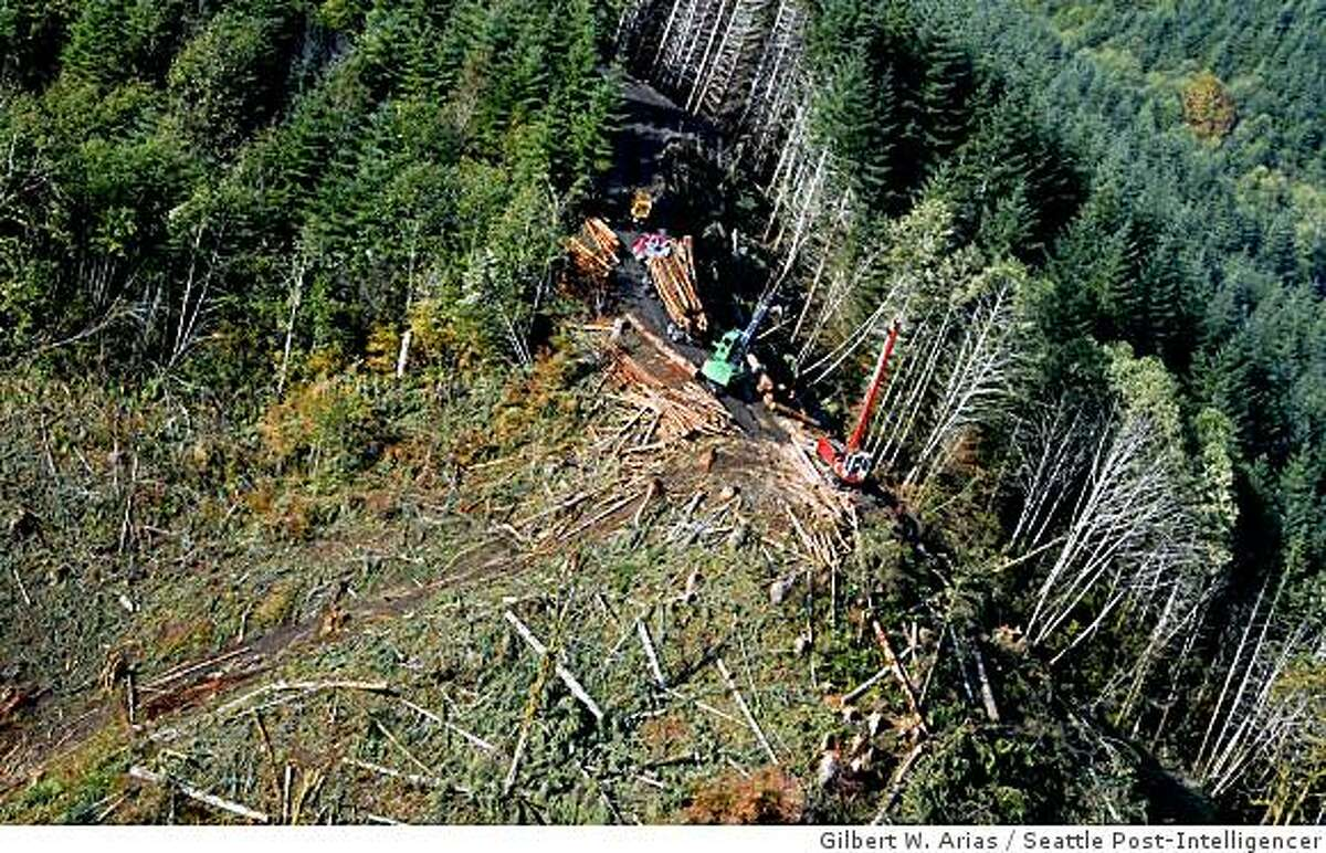 An aerial view of loggers harvesting timber at An aerial view of loggers harvesting timber at Camp Delezene Boy Scout Camp near Elma Wash on Tuesday October 14, 2008.