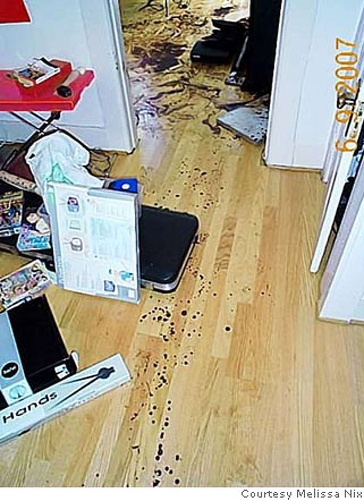 Photos of the apartment of Hugues De La Plaza, in San Francisco, Calif., after her was found dead from knife wounds. SFPD say they think it was a suicide but family members and friends think it was a homicide. Photos courtesy Melissa Nix