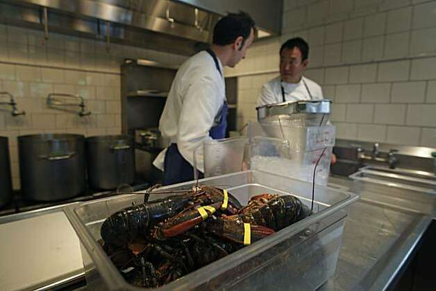 Fresh live Main lobsters wait their fate out in the French Laundry prep area of the three Michelin star restaurant kitchen. Wednesday August 18, 2010. Photo: Lance Iversen, The Chronicle