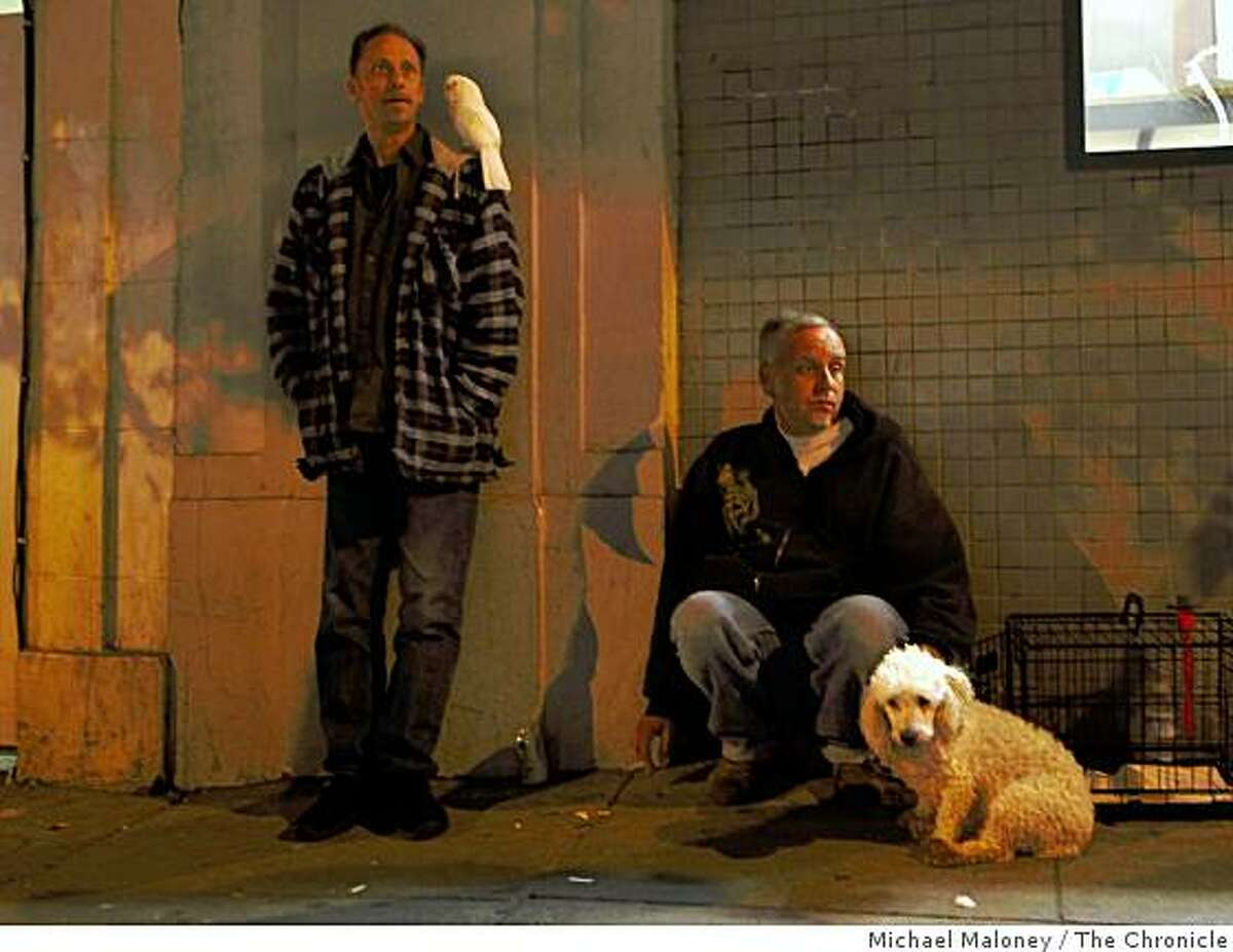 Mike Godfrey (left) and his friend Andre Lambere were evacuated by the SFFD from their apartment at 816 Geary Street in San Francisco, Calif., where one person died on January 12, 2009 from a gas leak. With them are their pets Buddy a cockatoo and Fang, the poodle.