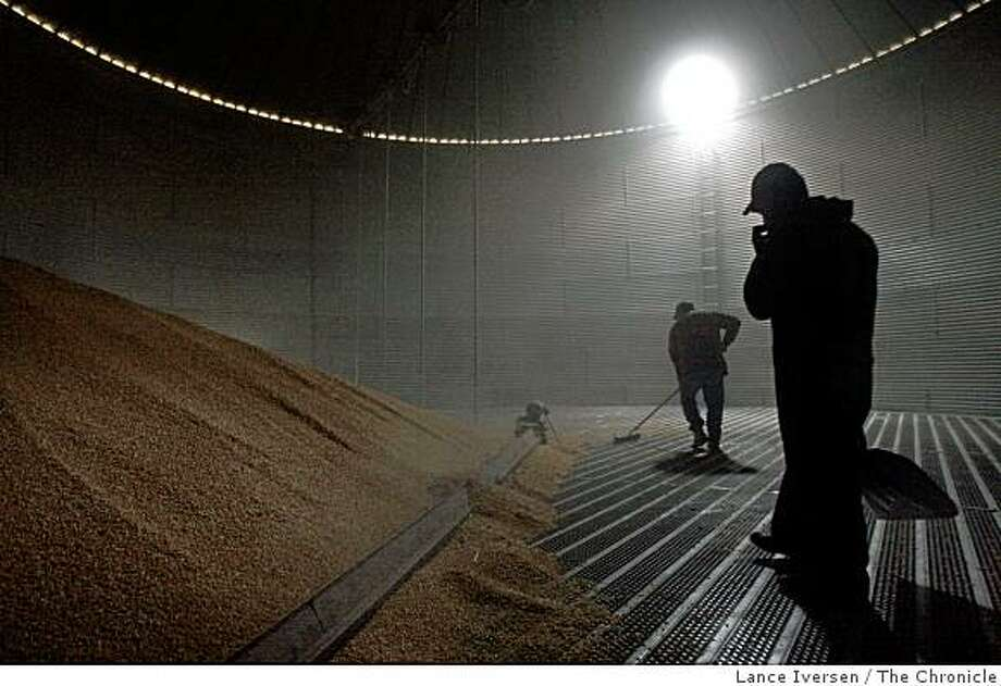 Steve Mello left and Jesus Franco monitor corn as it�s funneled out to waiting trucks at one of the silos Mello farms operates on Tyler Island outside Walnut Grove Calif. Wednesday, Nov. 26, 2008. Photo: Lance Iversen, The Chronicle