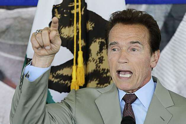 California Gov. Arnold Schwarzenegger speaks during a meeting of the Bay Area Council in Santa Clara, Calif., Friday, Aug. 6, 2010. Photo: Marcio Jose Sanchez, AP
