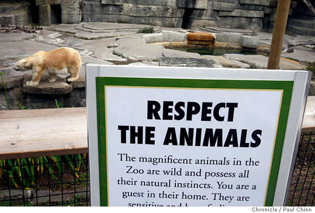 New signage was placed near Ulu the polar bear and other exhibits when the San Francisco Zoo reopened to the public in San Francisco, Calif. on Thursday, Jan. 3, 2008. The zoo has been shut down since Christmas Day while authorities investigated a mauling by Siberian tiger Tatiana that resulted in the death of one visitor and injuries to two of his friends.  PAUL CHINN/The Chronicle Photo: PAUL CHINN