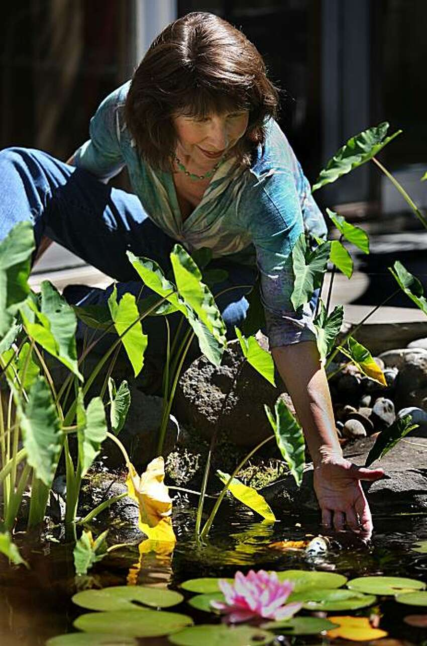 Donne Davis, who started GaGa Sisterhood--a social network for enthusiastic grandmas--hand feeds her fish in her garden in Menlo Park, Calif., on Monday, August 2, 2010. She mentions her grandchildren really love feeding and petting the koi.