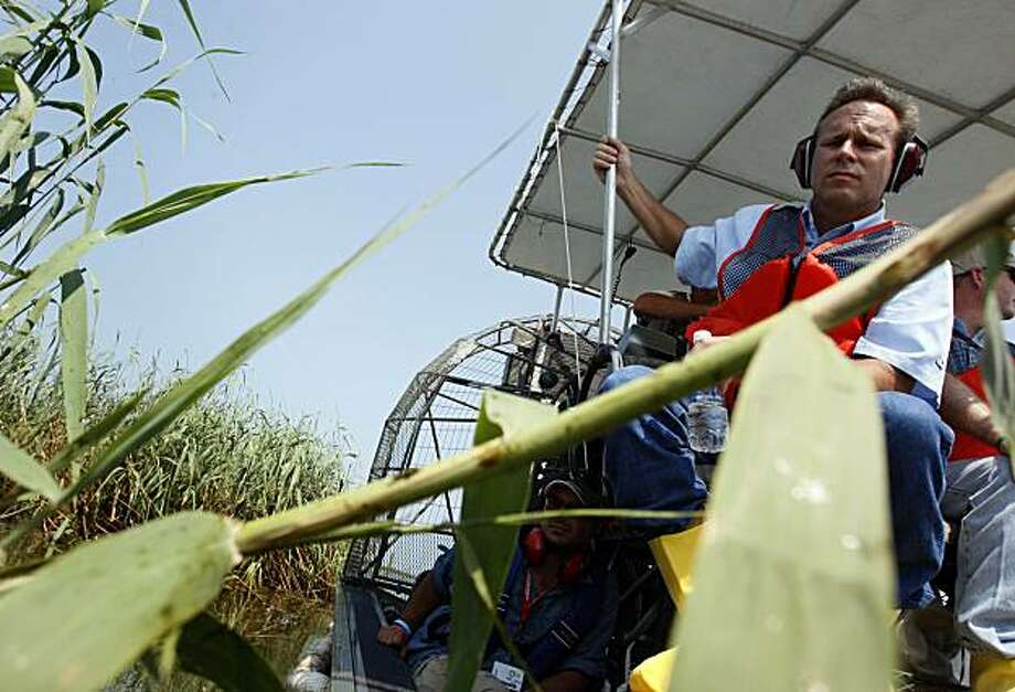 BP PLC COO of Exploration and Production Doug Suttles looks at a 20-yard patch of oiled roso-cane reeds from an air boat near the South Pass of the Mississippi River in Plaquemines Parish, La., Sunday, Aug. 1, 2010. Photo: Patrick Semansky, AP