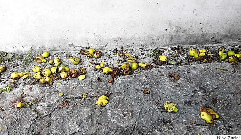 """Visby 521"" (2007) pigment print by Nina Zurier18 x 32 in. Photo: Nina Zurier"