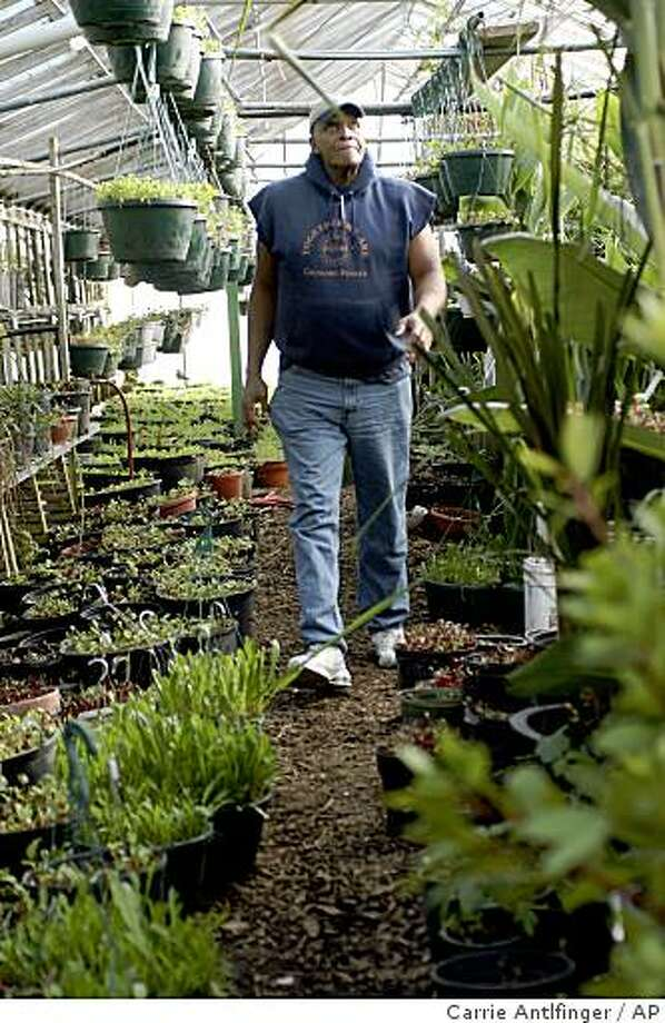 **ADVANCE FOR USE SUNDAY DEC. 14, AND THEREAFTER** Will Allen, founder and chief executive officer of Milwaukee-based Growing Power, walks through one of the organization's greenhouses on Milwaukee's north side Dec. 4, 2008. His business sells cheaper fruits and vegetables and he said he's seen business rise 25 percent over the last six months. (AP Photo/Carrie Antlfinger) Photo: Carrie Antlfinger, AP