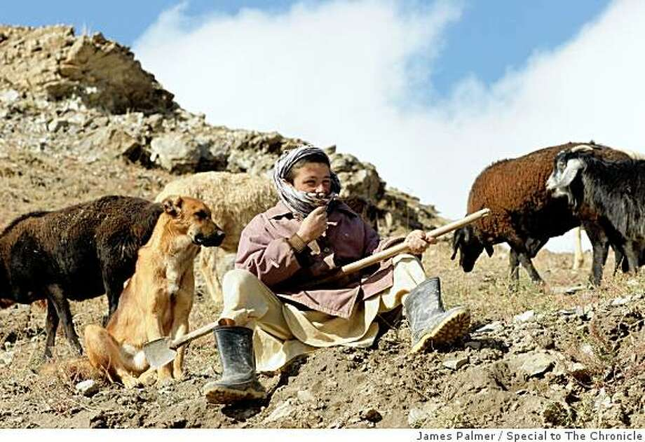 A boy watches over his family's herd of sheep and goats in the Afghan province of Badakhshan on November 2, 2008. Today, many Afghan couples are torn between adhering to the tradition of producing a large family and the financial practicalities of supporting a sizeable household in hard economic times. This dilemma is particularly significant in rural areas of the country where parents depend on their children to contribute toward tending the family?s crops and livestock, but where war and drought have pushed more than half of the population into poverty. Photo: James Palmer, Special To The Chronicle