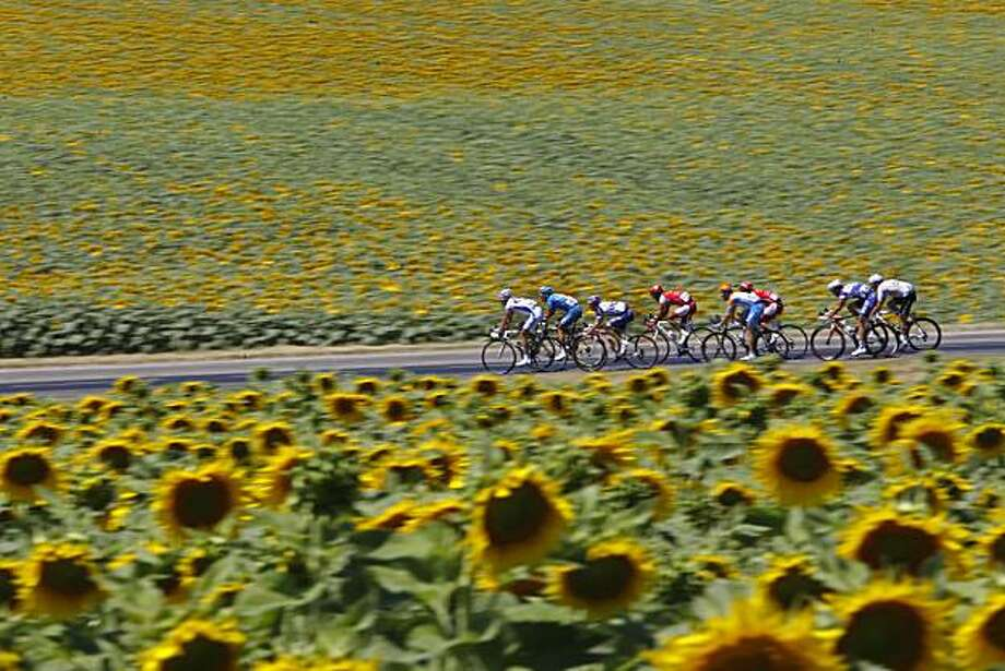 The breakaway group passes fields of sunflowers during the 14th stage of the Tour de France cycling race over 184.5 kilometers (114.6 miles) with start in Revel and finish in Ax Trois Domaines, France, Sunday, July 18, 2010. Photo: Christophe Ena, AP