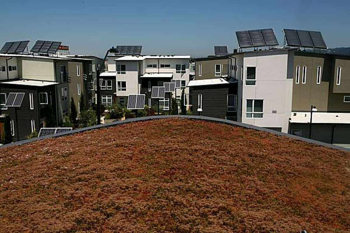 """The green roof of the """"dragon's tail"""" building faade as it overlooks the Tassafaronga Village town homes designed by Architect David Baker and his firm on Friday, July 16, 2010 in Oakland, Calif."""