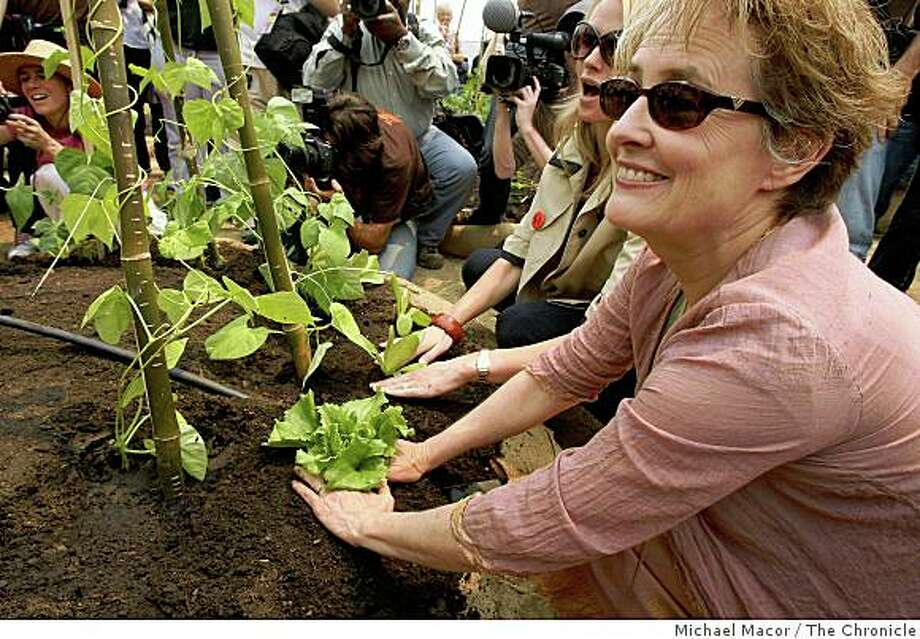 Slow Food Nation founder Alice Waters and along with the help of over 150 volunteers, San Francisco Civic Center became the largest edible garden in since 1943, on Saturday July 12, 2008. The display will provide visitors the opportunity to learn about urban food production.Photo By Michael Macor/ The Chronicle Photo: Michael Macor, The Chronicle