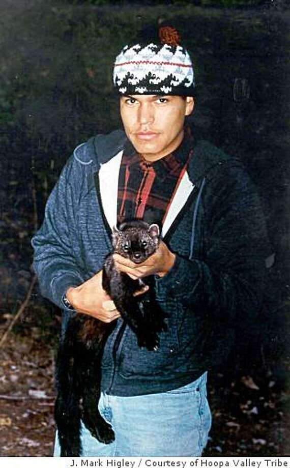Hoopa Valley Tribal member Billy Colegrove holds an anesthetized Pacific fisher. Photo: J. Mark Higley, Courtesy Of Hoopa Valley Tribe