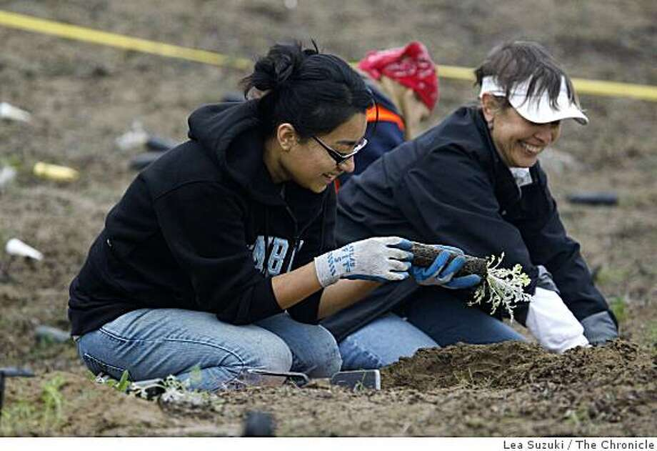 Volunteers Mercedes Martinez (left) and Luidina Van Ness talk together as they work near Baker Beach in San Francisco, Calif. on Wednesday, November 19, 2008. Photo: Lea Suzuki, The Chronicle