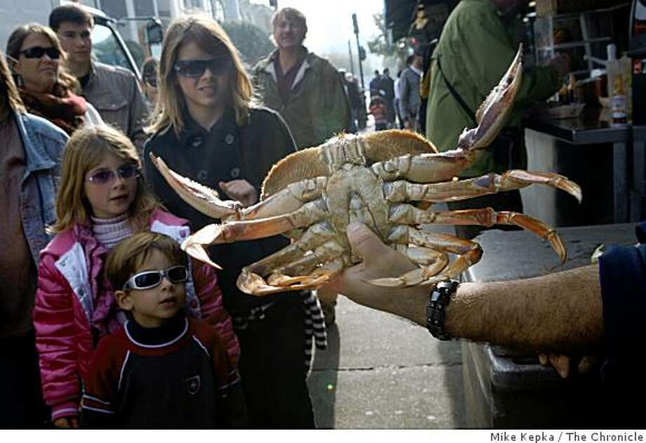 Merrick Dyer, 4, Marisa Dyer, 7, and Meghan Dyer, 11, get a close up look at a dungeness crab from a vendor at Fisherman's Wharf on Monday, Nov. 25, 2008 in San Francisco, Calif. Photo: Mike Kepka, The Chronicle