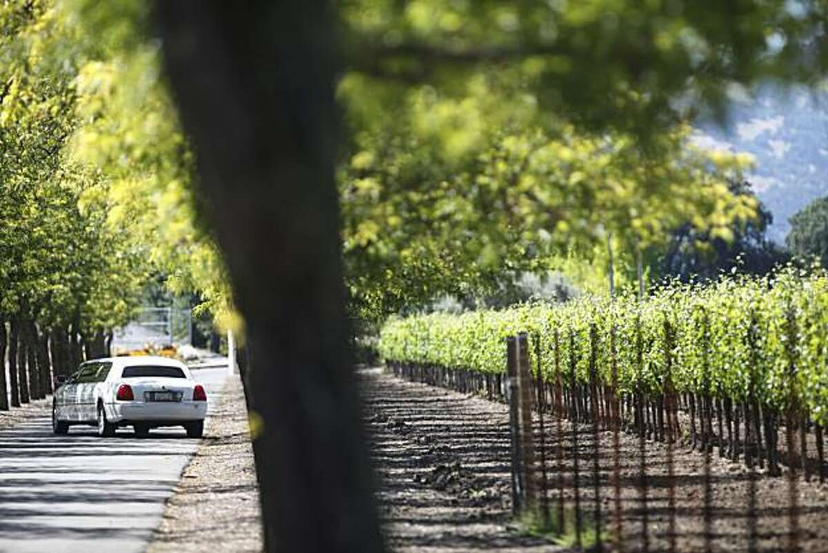 A limo drives down the main drag of Sterling VIneyards on on Wednesday June 16, 2010 in Calistoga, Calif.
