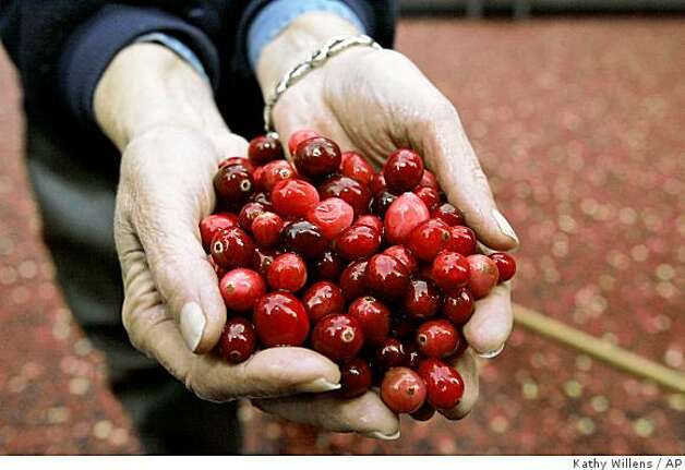 Irene Sorenson displays a handful of cranberries while standing in a cranberry bog on display in New York's Rockefeller Center, Wednesday, Nov. 1, 2006. Photo: Kathy Willens, AP