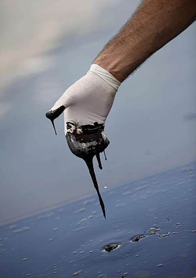 A member of Louisiana Gov. Bobby Jindal's staff reaches into thick oil in the Northern regions of Barataria Bay in Plaquemines Parish, La., Tuesday, June 15, 2010. Photo: Gerald Herbert, AP