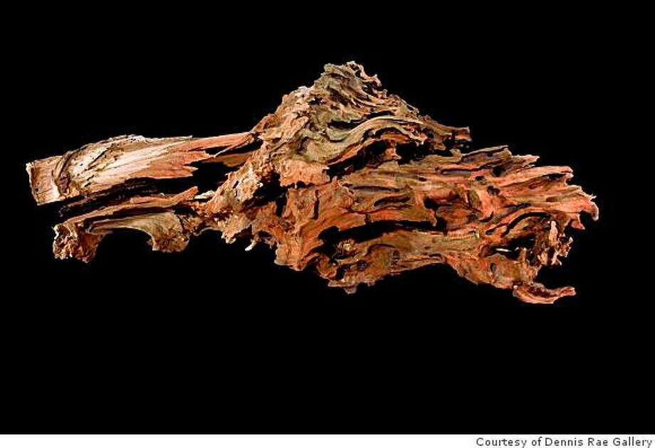 The Tao of Wood, Mickey Hart, Dennis Rae Fine Art, SFcaption:  Mickey Hart finds nature's sculptural creations on theforest floor and brings their forms into focus. Photo: Courtesy Of Dennis Rae Gallery
