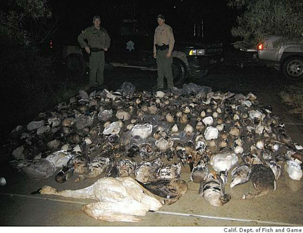 California Department of Fish and Game wardens Kyle Kroll and Greg Grinton pose with some of the 335 birds found at a Gilroy property of a man convicted of poaching.