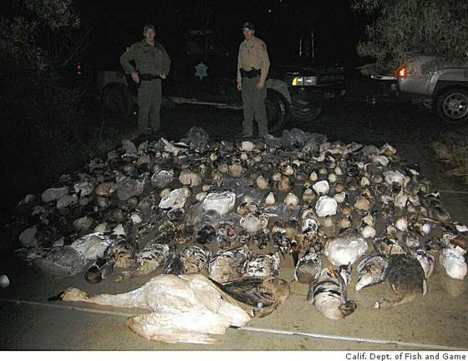 California Department of Fish and Game wardens Kyle Kroll and Greg Grinton pose with some of the 335 birds found at a Gilroy property of a man convicted of poaching. Photo: California Department Of Fish An, Calif. Dept. Of Fish And Game