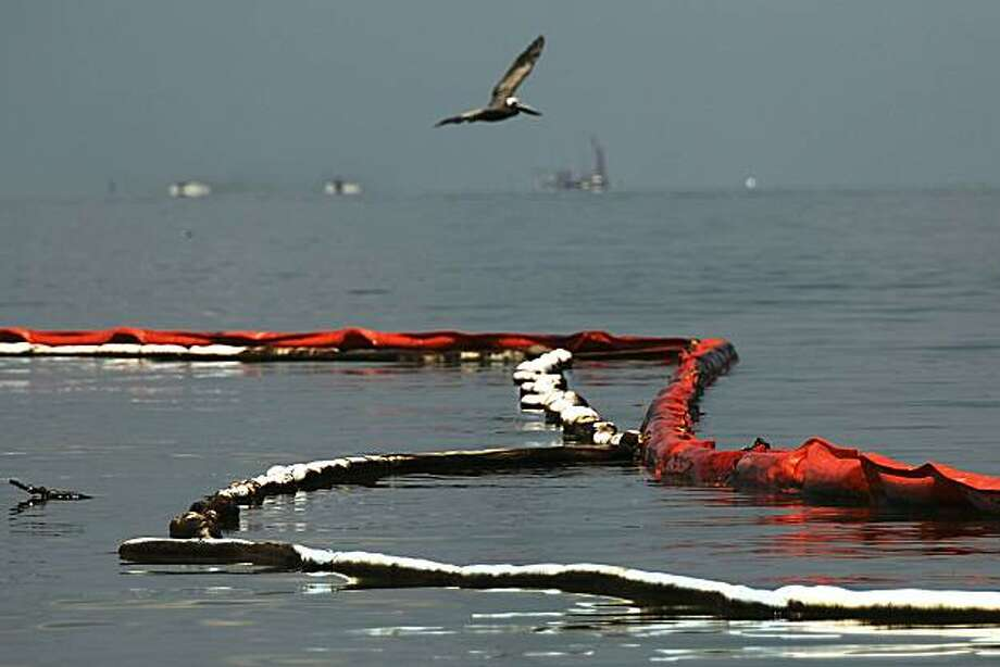 GRAND ISLE, LA - JUNE 14:  A pelican flies over an oil slick boom off of Bird Island Two June 14, 2010 in Grand Isle, Louisiana. According to the U.S. Fish and Wildlife Service, some 1,282 oiled birds have been captured in time to be treated with the intention of eventually releasing them back into the wild. The BP spill has been called the largest environmental disaster in American history. U.S. government scientists have estimated that the flow rate of oil gushing out of a ruptured Gulf of Mexico oil well may be as high 40,000 barrels per day. President Obama will make his fourth trip to the Gulf on Monday. Photo: Spencer Platt, Getty Images