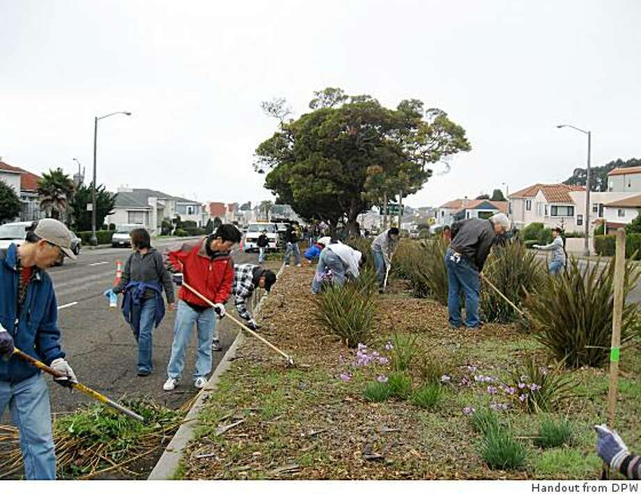 Volunteers cleaning the Sloat Blvd Center median from the 2007 Clean Team event Photo: Handout From DPW