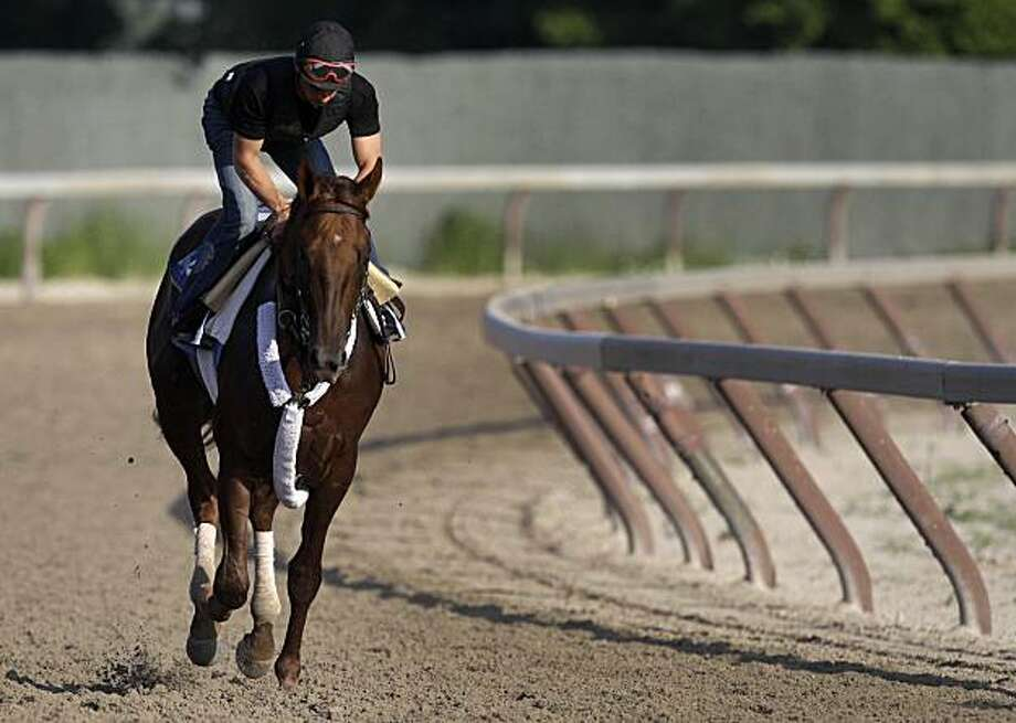 Belmont Stakes hopeful Fly Down makes his way around the track during a workout with exercise rider Eddie Cruz up at Belmont Park Friday, June 4, 2010, in Elmont, N.Y. The 142nd running of the Belmont Stakes is Saturday Photo: Julie Jacobson, AP