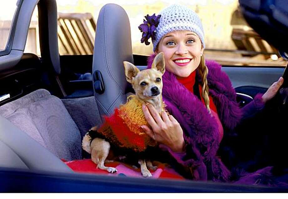 """Reese Witherspoon stars in """"Legally Blonde."""""""
