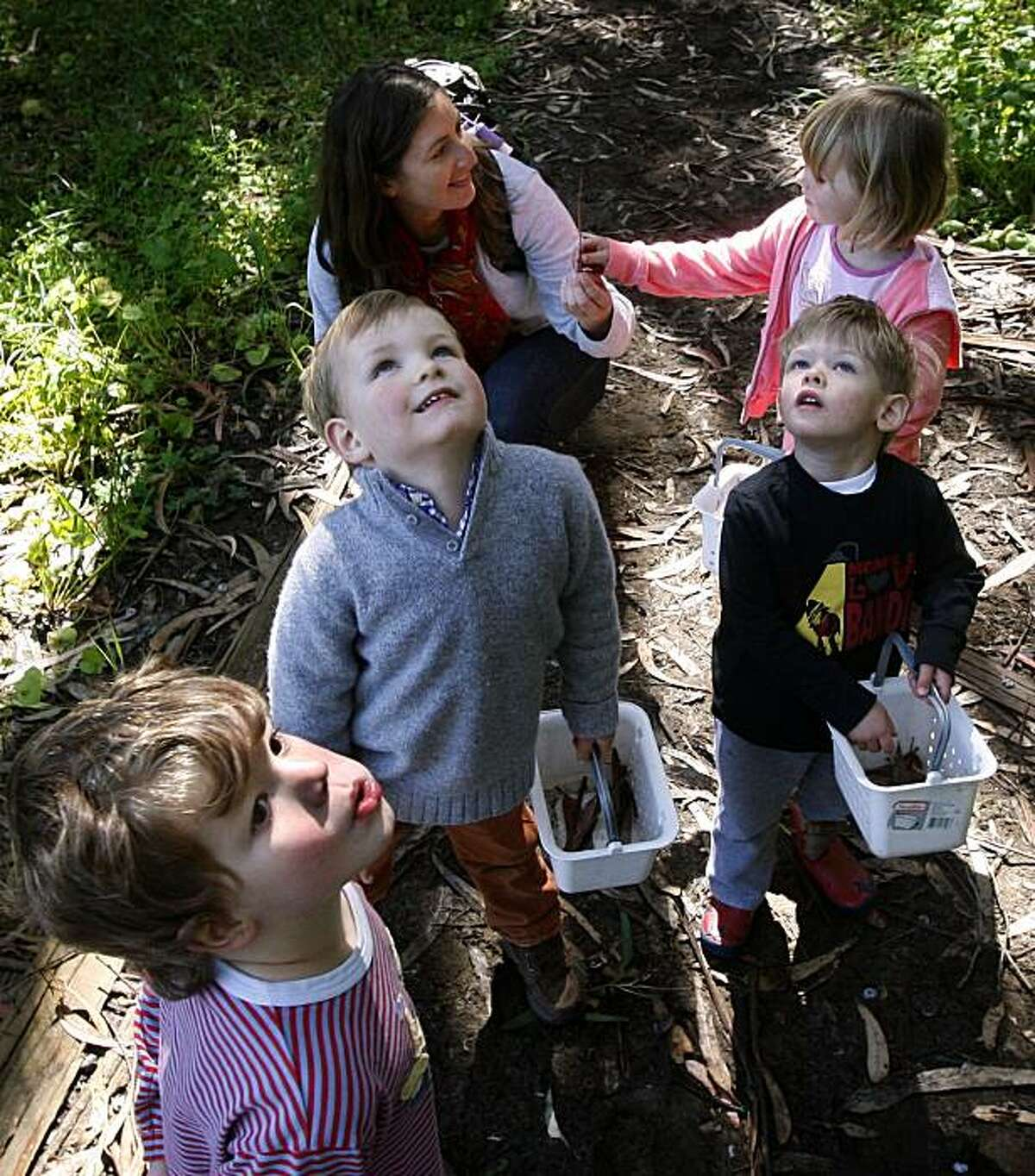 Scotty (lower left), Tate (center) and Jack look at the treetops above while teacher Becky Fien tends to Willa (background) during a walk in the forest at the Nature Nurture outdoor preschool program at The Presidio in San Francisco, Calif., on Tuesday, May 11, 2010.