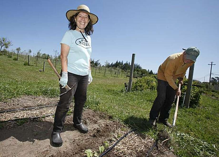 Bette Kroening (left) and her husband Manfred (right) are busy planting and pulling weeds on their property Thursday May 13, 2010. Bette Kroening, who runs the popular Bette's Oceanview Diner in Berkeley, Calif., is now farming a 5 acre ranch near Sebastapol, Calif. with her husband Manfred. Photo: Brant Ward, The Chronicle