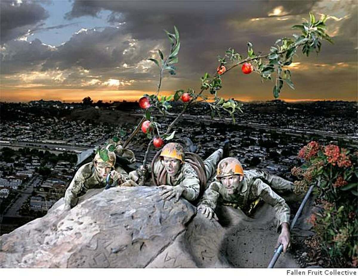 Fallen Fruit, Elysian Park, 2005
