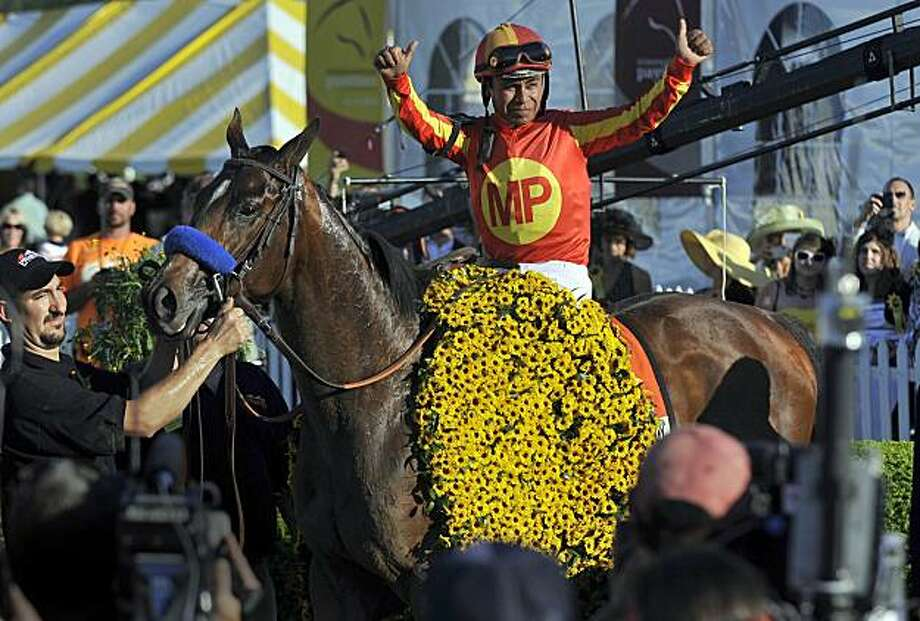 Martin Garcia and Lookin At Lucky make their way to the winner's circle following their triumph in the 135th Preakness Stakes at Pimlico Race Course in Baltimore, Maryland, on Saturday, May 15, 2010. (Kim Hairston/Baltimore Sun/MCT) Photo: Kim Hairston, MCT