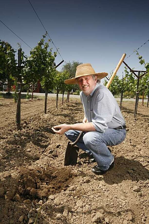 John Williams, winemaker at Frog's Leap winery in Rutherford. Photo: Craig Lee, The Chronicle