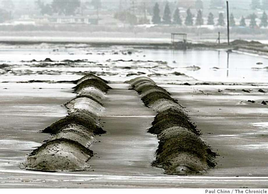 Neatly arranged rows of salt stretch across the Cargill salt evaporators in Redwood City, Calif. on Wednesday, Oct. 31, 2007. Cargill hopes to develop the 1,400 acre site which is angering environmentalists saying it should be restored to original wetlands open space. Photo: Paul Chinn, The Chronicle