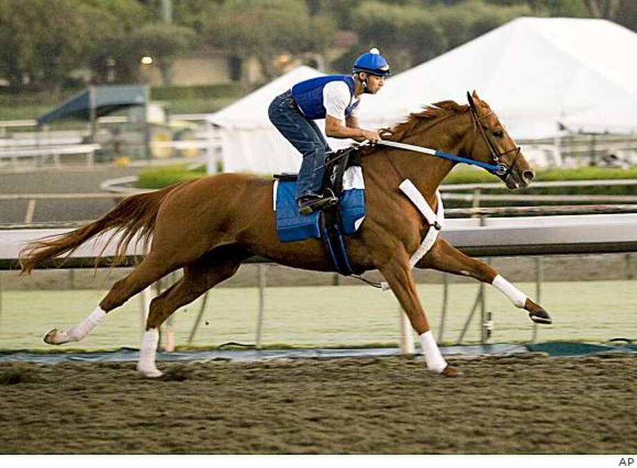 Curlin, with exercise rider Carlos Rosas aboard, works out on Santa Anita's new synthetic surface Monday morning, Oct.  6, 2008 in Arcadia, Calif. Photo: AP