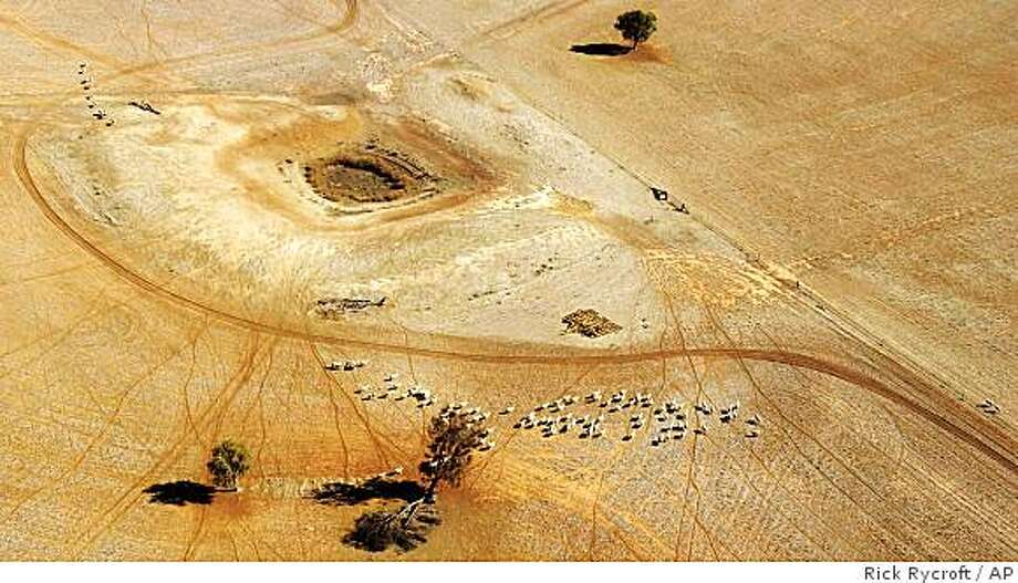 **APN ADVANCE FOR SUNDAY OCT.5**  ** FILE** In this July 13, 2002 file photo,  sheep wonder parched land near a dry reservoir on a Condobolin property, 460 kilometers (285 miles) northwest of Sydney, . In the world's driest inhabited continent, there is just not enough water to go around With households, cities, industries and agriculture all demanding their share. (AP Photo/Rick Rycroft, File) Photo: Rick Rycroft, AP