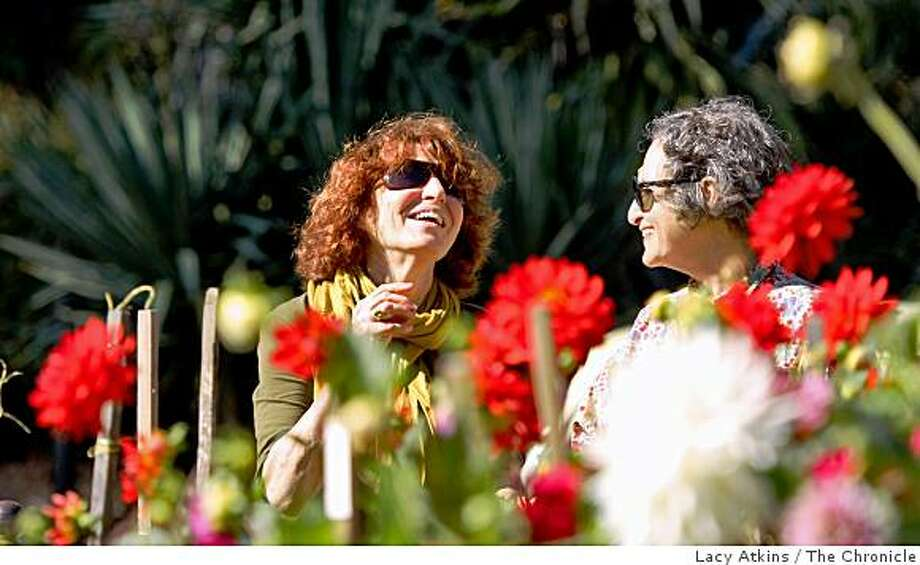 Susan Evans laughs with friend Diane Balter as they enjoy the Dahila Garden at the Conservatory of Flowers,  Tuesday Oct. 7, 2008, in San Francisco, Calif. The Dahila's are in bloom from August to late October. Photo: Lacy Atkins, The Chronicle