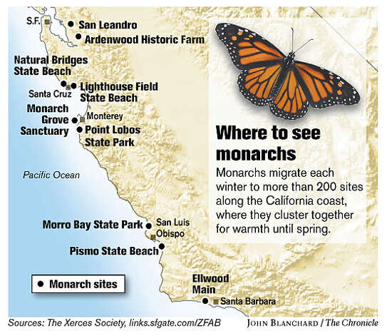 Where to see monarchs (John Blanchard / The Chronicle)