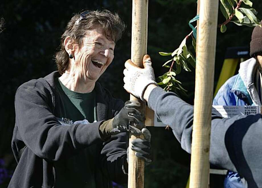 Chris Riess helps volunteers plant trees for Friends of the Urban Forest in the Outer Richmond neighborhood in San Francisco, Calif., on Saturday, March 13, 2010. Photo: Paul Chinn, The Chronicle